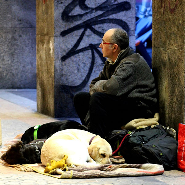 picture of homeless and his pet dog living on the street